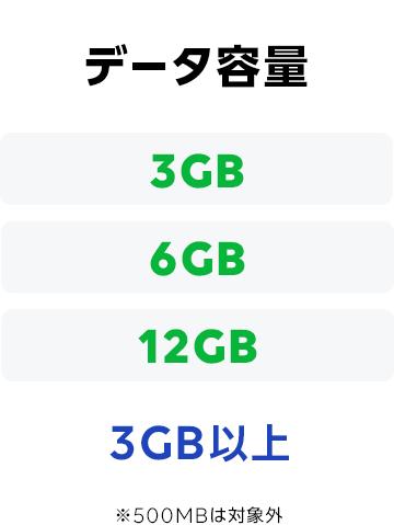 データ容量 3GB以上 3GB 6GB 12GB ※500MBは対象外