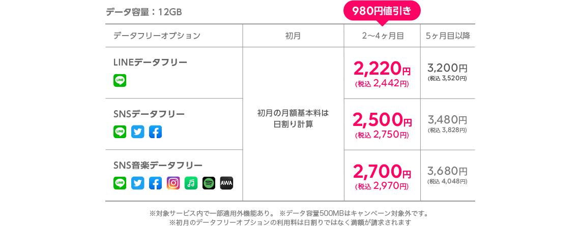 データ容量:12GB 料金