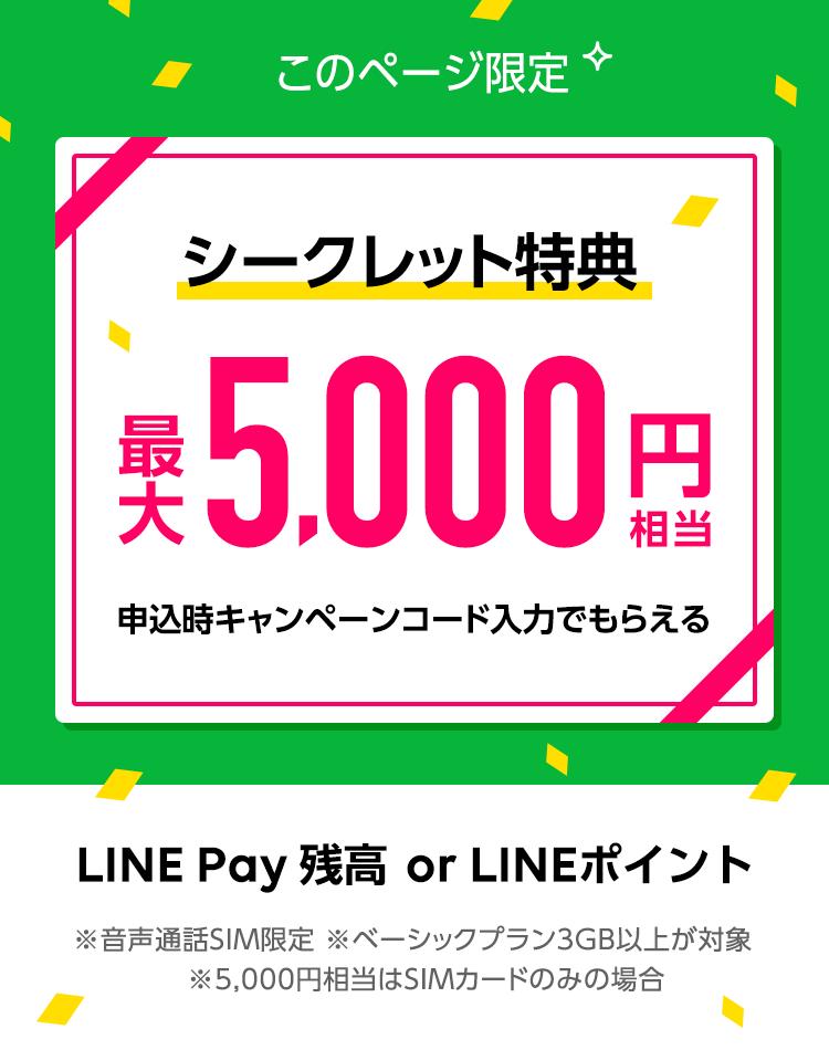 このページ限定 シークレット特典 最大5,000円相当 申込時キャンペーンコード入力でもらえる LINE Pay 残高 or LINEポイント
